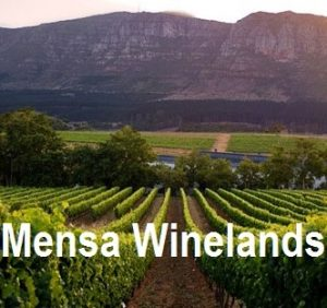 Winelands: Speaker evening