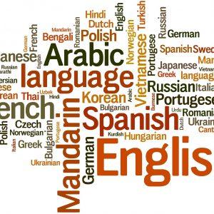 Winelands: Languages SIG