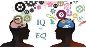 Winelands: Discussion SIG - 'IQ vs EQ'