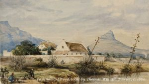 Winelands: Private tour of the Parliamentary artwork collection