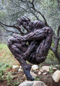 Winelands: Private guided tour of the Dylan Lewis sculpture garden