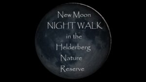 Winelands: New Moon night walk in the Helderberg Nature Reserve